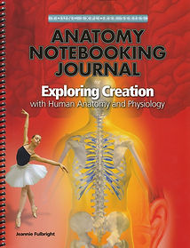 A and P Notebooking Journal.jpg
