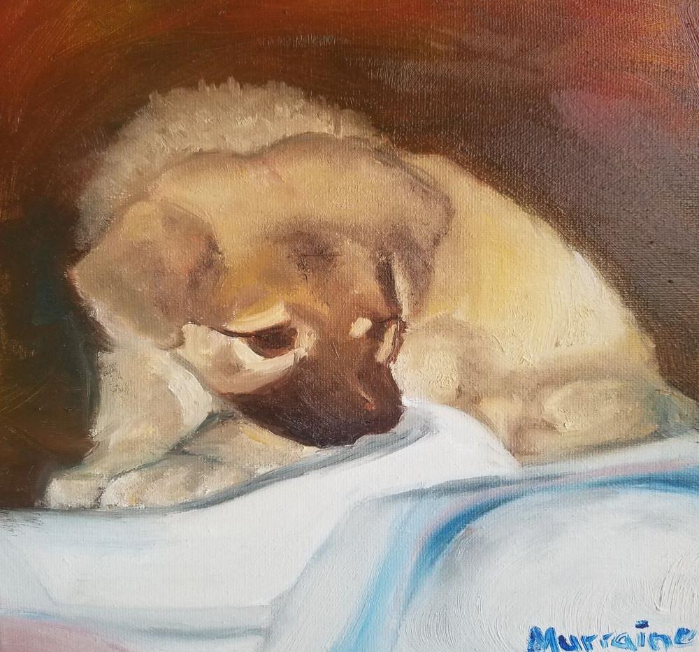 Puppy Portrait 8x10 Oil on Canvas