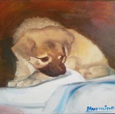 Puppy Portrait 8x10 Oil on Canvas.jpg