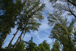 Parco Naturale Regionale Magra