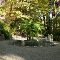 Fontana nella zona piante esotiche