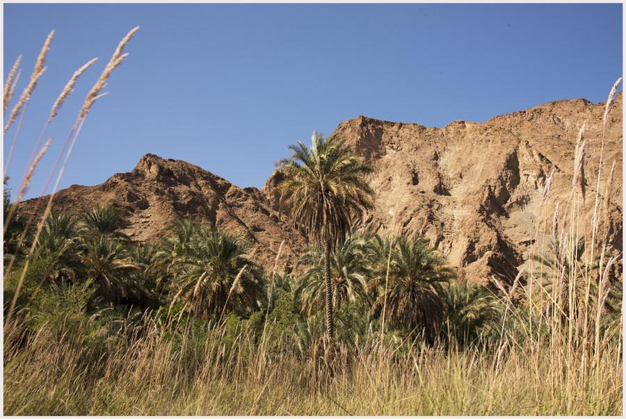 Wadi Al Arbeen