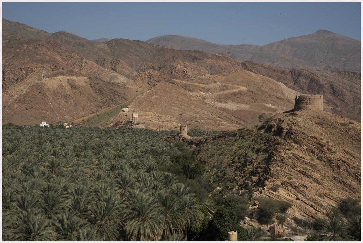 Oasi di Al Hamra