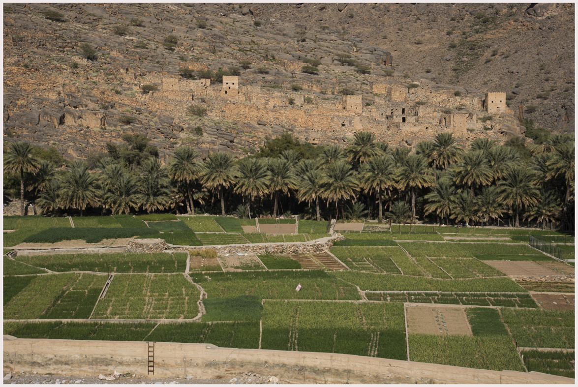 Al Hamra - Antico villaggio Ghul