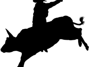 Boys Steer Riding 12-14