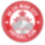 Ho Chi Minh City FC Current Badge.png