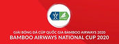 New National Cup 2020 Logo USE.jpg
