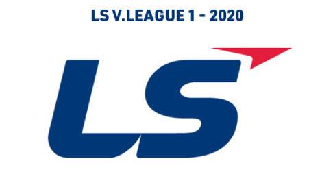 Small V League 1 Logo.jpg