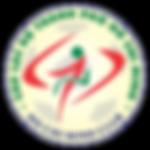 TP Ho Chi Minh City Badge 2011 to 2012.p