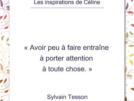 Inspiration de Céline, 5 mai 2020