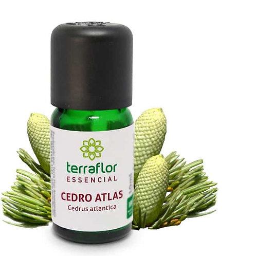 Óleo Essencial Cedro Atlas 10ml - Terraflor