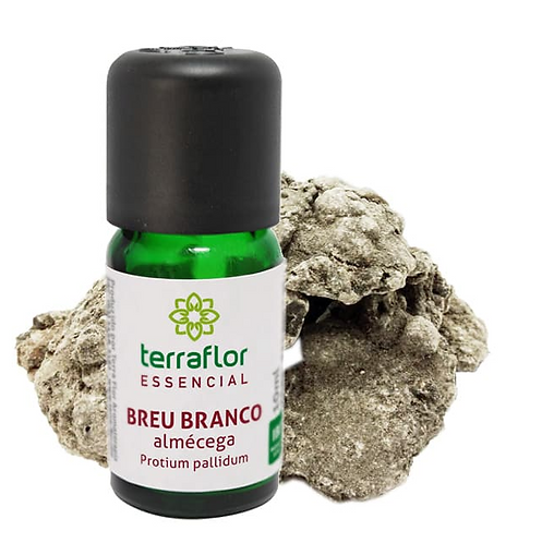 Óleo Essencial Breu Branco (almécega) 10ml - Terraflor
