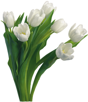 bouquet_PNG58.png