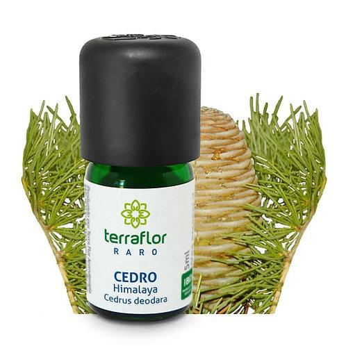 Óleo Essencial Cedro Himalaya 5ml - Terraflor