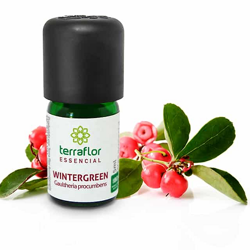 Óleo Essencial Wintergreen 5ml - Terraflor