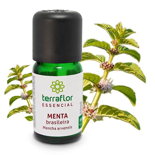 Óleo Essencial Menta Brasileira 10ml - Terraflor