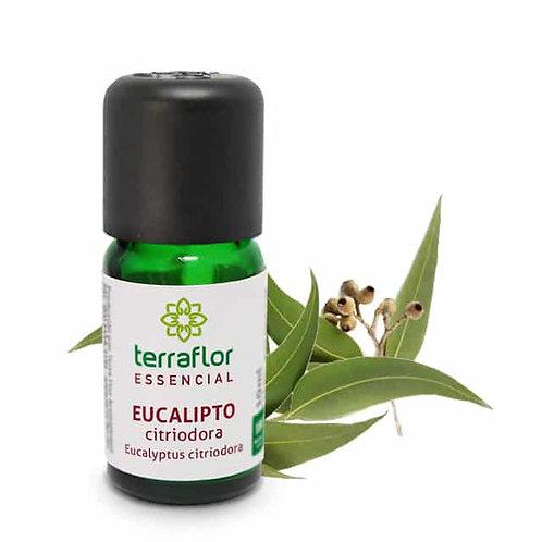 Óleo Essencial Eucalipto Citriodora 10ml - Terraflor