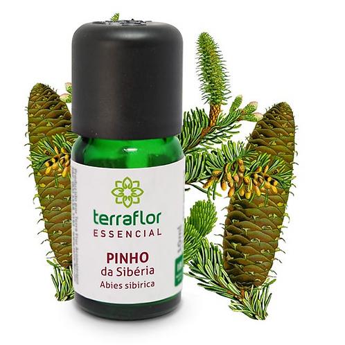 Óleo Essencial Pinho da Sibéria 10ml - Terraflor