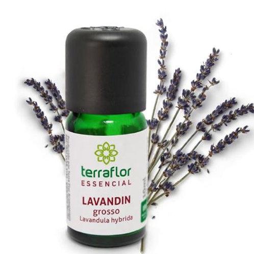 Óleo Essencial Lavandin Grosso 10ml - Terraflor