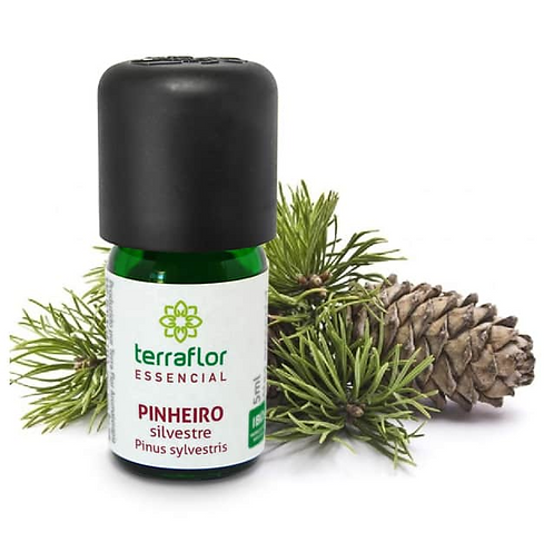 Óleo Essencial Pinheiro Silvestre 5ml - Terraflor
