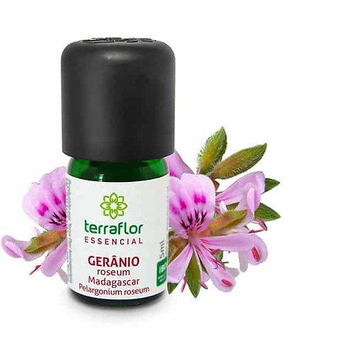 Óleo Essencial Gerânio Roseum Madagascar 5ml - Terraflor