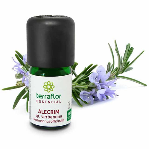 Óleo Essencial Alecrim qt. Verbenona 5ml - Terraflor