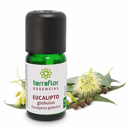 Óleo Essencial Eucalipto Glubulus 10ml - Terraflor