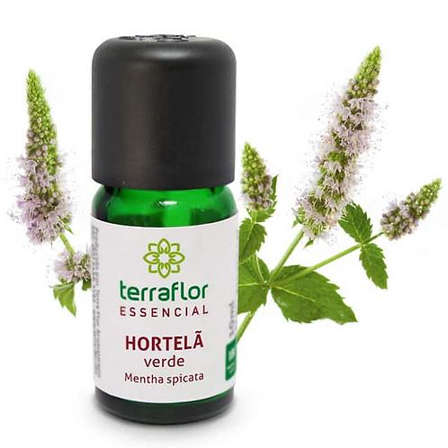 Óleo Essencial Hortelã Verde 10ml - Terraflor