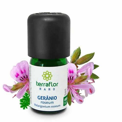 Óleo Essencial Gerânio Roseum Raro 5ml - Terraflor