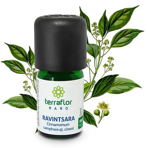 Óleo Essencial Ravintsara 5ml - Terraflor