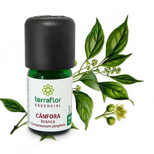 Óleo Essencial Cânfora Branca Natural 5ml - Terraflor