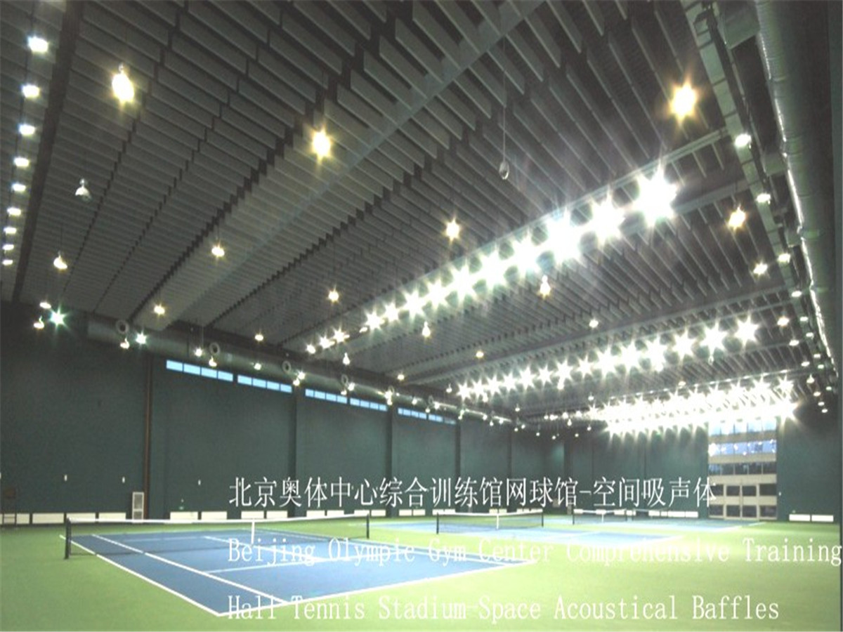 Beijing Olympic Gym Center Comprenensive