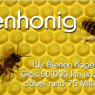 Honig Etikette 500gr_Bio.JPG