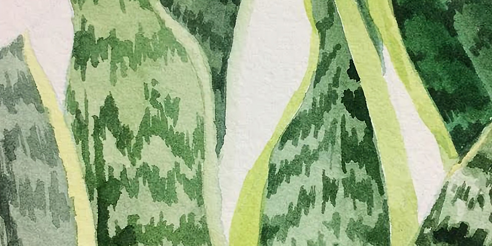 Introduction to Watercolor Plants PM $35