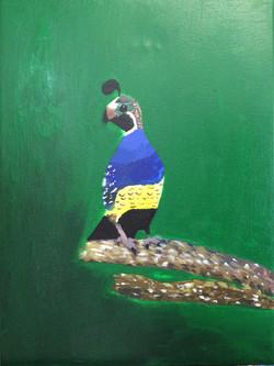 theonnebird