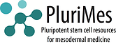 PluriMes logo FINAL 210114.png