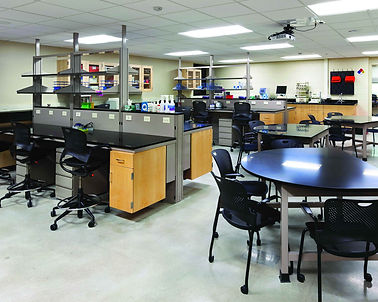 ergonomic lab chairs