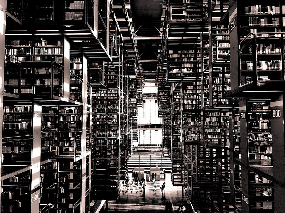 Biblioteca vasconcelos_edited_edited.jpg