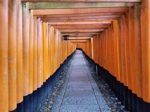 This is among the most popular destinations in all of Japan, famous for its thousands of Torii gates; but it was incredibly empty. I was able to take this photo with nobody in the shot during the middle of the day.