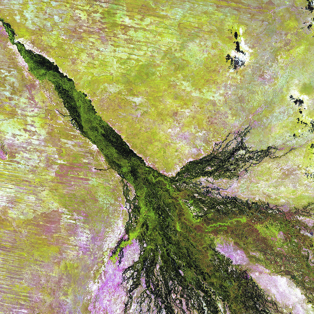 The Okavango: the pan handle is the section at the top of the picture which then give rise to the fingers making up the seasonally flooded part of the delta. Picture source: © 2012-2017 AstroArts.org