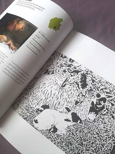 book sml.jpg
