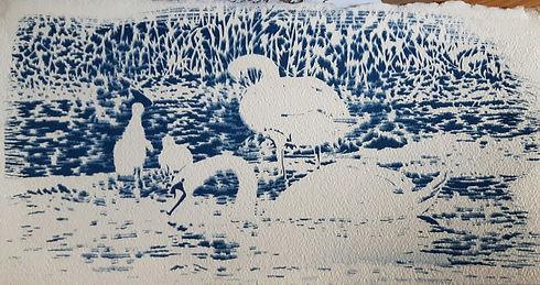 Swans with Cygnets 2017.jpg