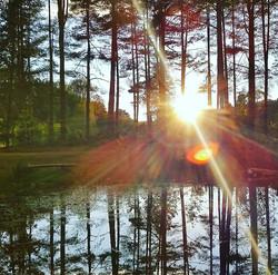 Metz Meadows Pond