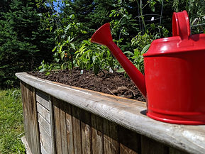 Watering can on garden ledge.jpg