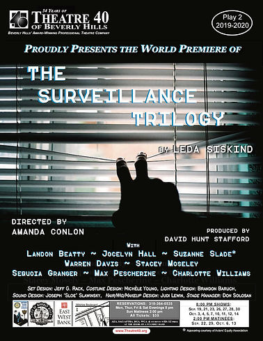 THE-SURVEILLANCE-TRILOGY-New-Poster-efly