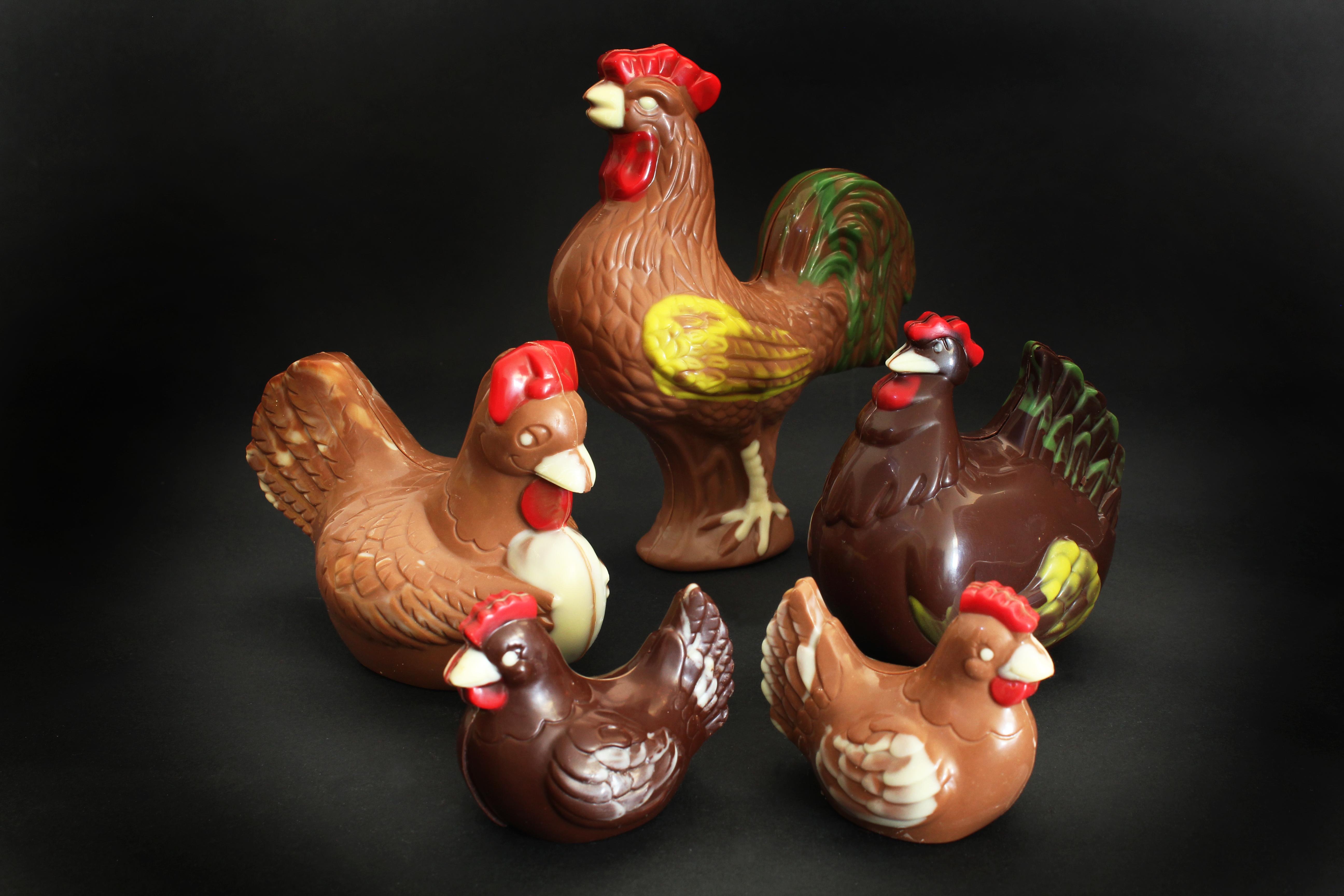 Les poules