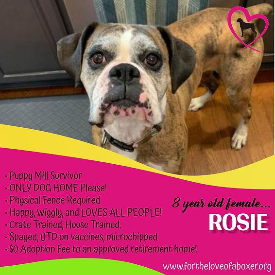 Rosie Ad.jpg
