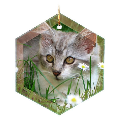 Sublimated  Glass  Hexagon 1-Sided Ornament
