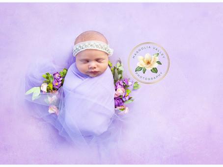 Indiara Skye|Newborn PhotoSession|Doylestown Pa|Magnolia Valley Photos.