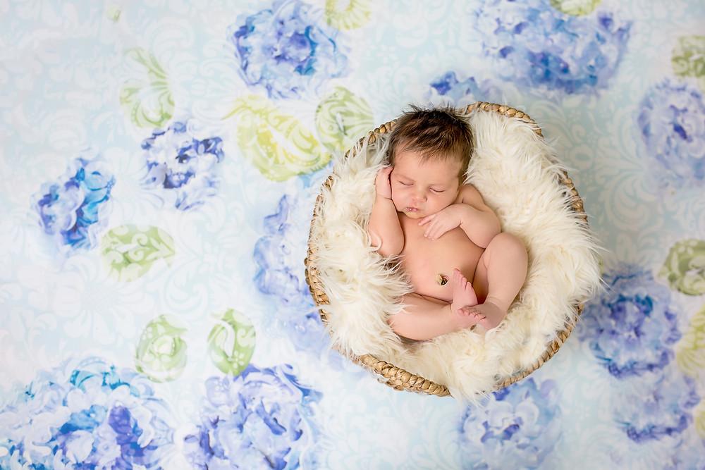 posed newborn photography, Magnolia Valley Photos, Bucks County Pa